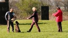 IPO 2 - Bewachung und Abholung Hund